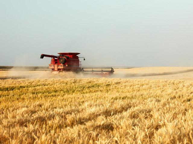 CE oferă 10 milioane de euro pentru promovarea produselor agroalimentare afectate de criză