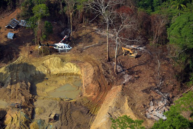 Amazon: Ritmul defrişărilor la maximul a 12 ani. Pădurea amazoniană a suferit pierderi într-un ritm accelerat de când Jair Bolsonaro a preluat funcţia de preşedinte al ţării,