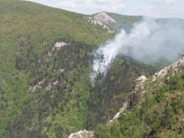 Italia nu face faţă incendiilor din Sardinia şi cere ajutor internaţional